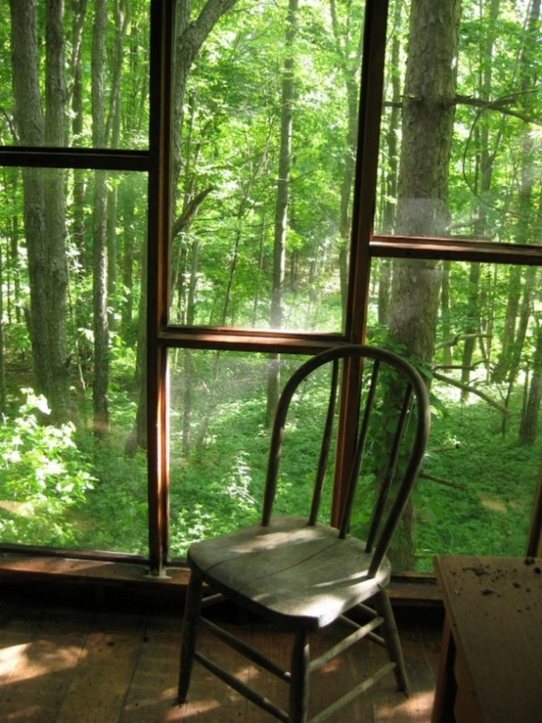 A wall of windows; a view of writers' heaven…