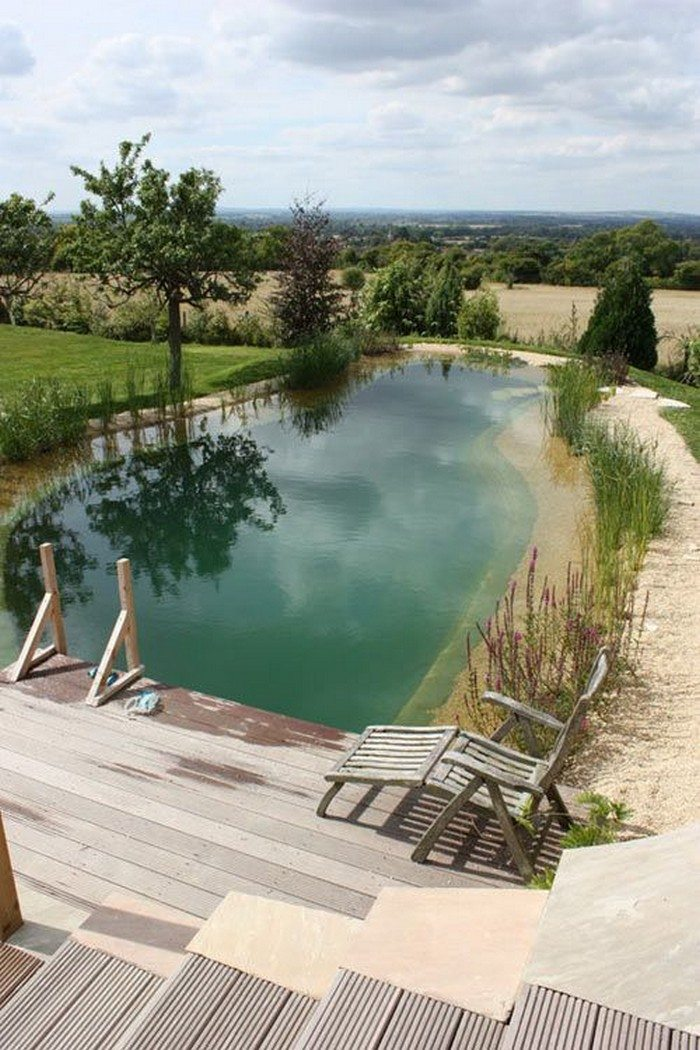 Welcome To The World Of Natural Swimming Ponds Ideas2live4