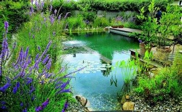 So much nicer than the traditional pool - a living swimming pond by Biotop