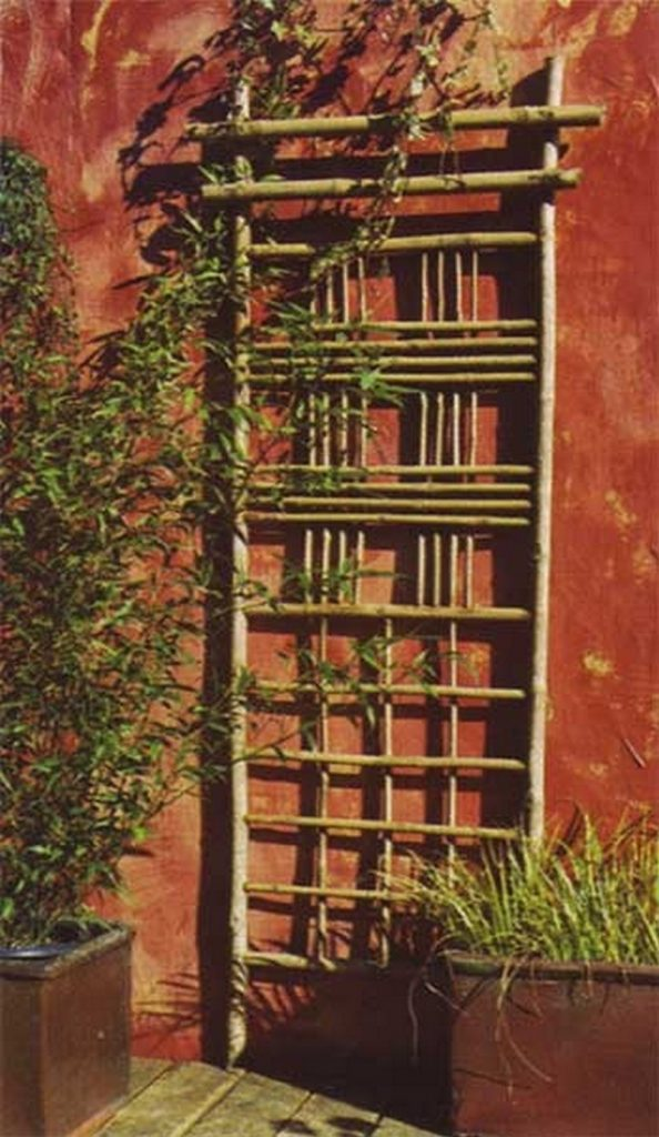 Image Result For How To Start A Garden Trellis