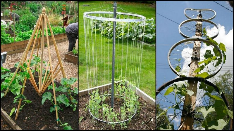 Trellis from recycled materials ideas2live4 for Garden decorations from recycled materials