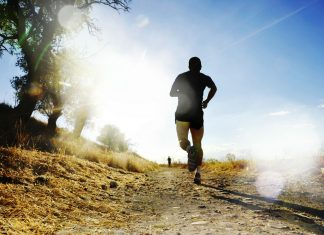 A fit and healthy human can run much greater distances than most other species