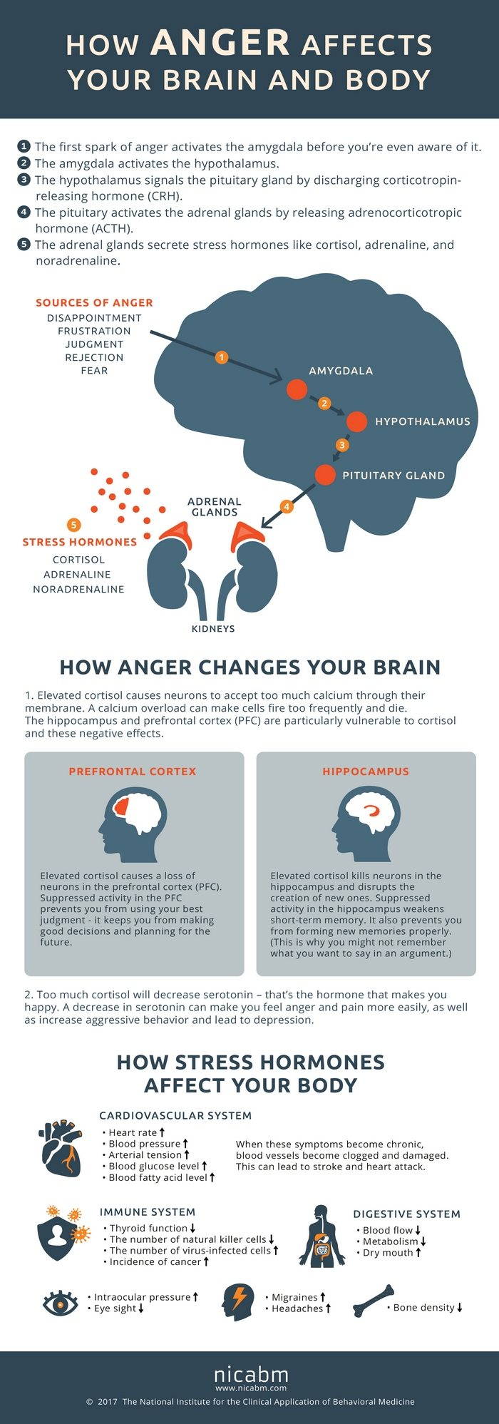 How anger affects your mind and body. Click the image to download a large version of the infographic.)