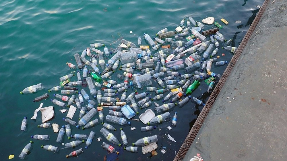 78,000 tonnes of plastic waste...and it's still growing!