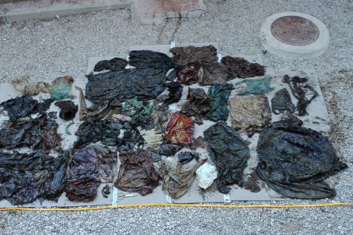 About 29 kilograms of rubbish was found in the whale's digestive tract. (Twitter: Espacios Naturales Murcia)