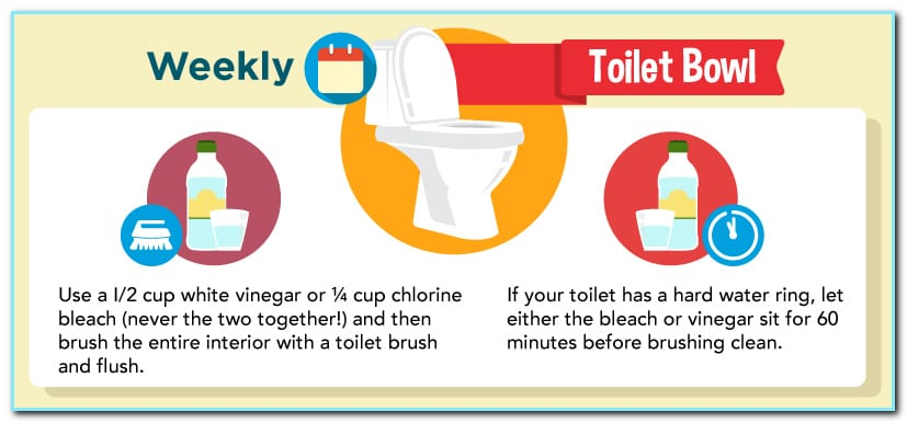 Want clean, bacteria-free toilet bowls? Vinegar does the trick!