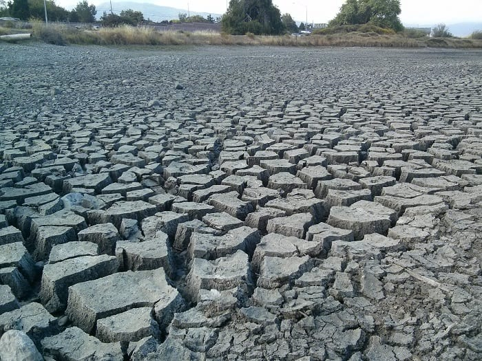 The UN says 5 billion people throughout the world could suffer water shortages by 2050.