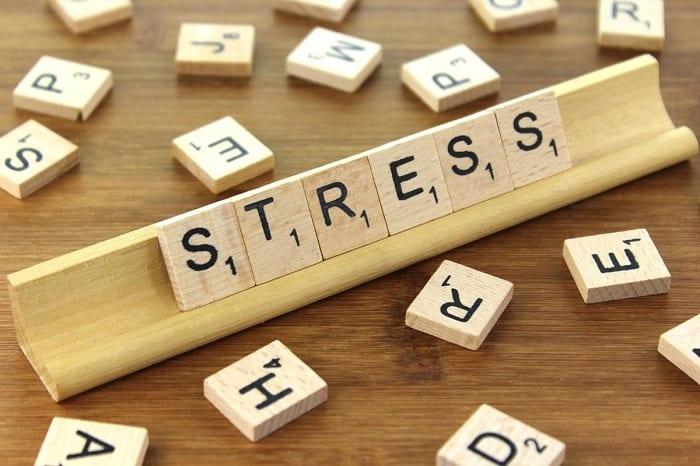 Stress can cause brain damage