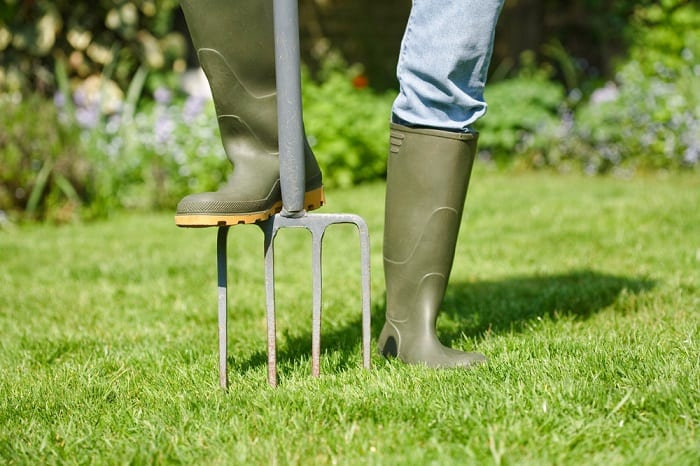 If you want a beautiful lawn come spring, you need to prepare it in the fall.