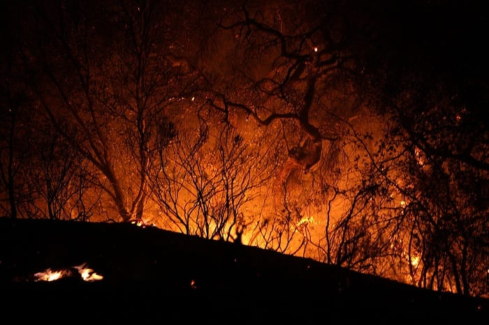 From the Amazon to Indonesia, from Australia to California, fire is blazing through immense tracts of land and property.