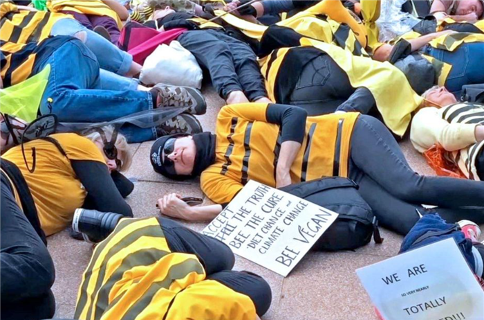 Extinction Rebellion Bee-mergency protest in Sydney.