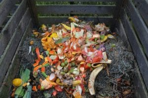 How compost can save our world