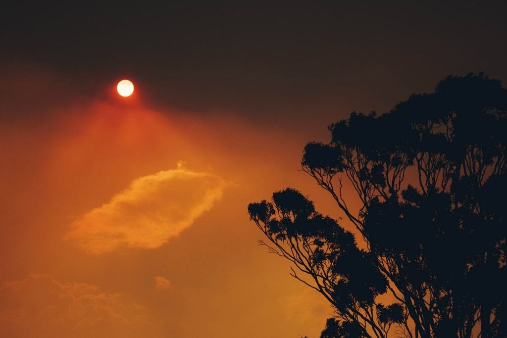 Smoke-filled sky during Australia's 2020 bushfire disaster - Stanley Li