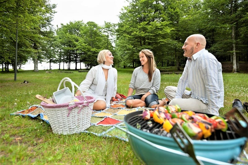 Who doesn't like a good picnic?